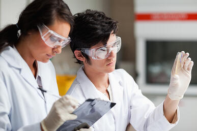 Concentrate science students looking at Petri dish in a laboratory